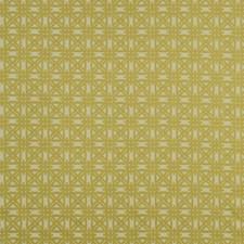 Sour Decorator Fabric by Robert Allen