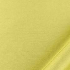 Fern Decorator Fabric by Beacon Hill