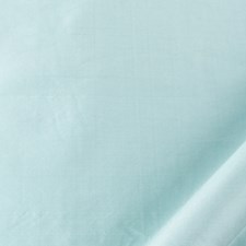 Robin Blue Decorator Fabric by Beacon Hill