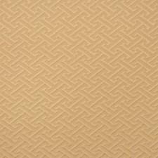 Tahini Decorator Fabric by RM Coco