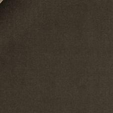 Bark Decorator Fabric by Beacon Hill