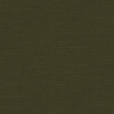 Forest Solids Decorator Fabric by Kravet