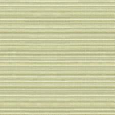 Celery Ottoman Decorator Fabric by Kravet