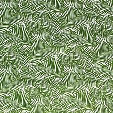 Palm Botanical Decorator Fabric by Kravet