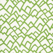 Lawn Decorator Fabric by Schumacher