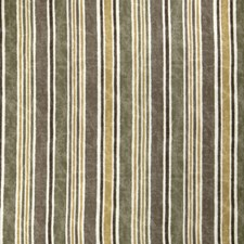 Sprout Stripes Decorator Fabric by Fabricut