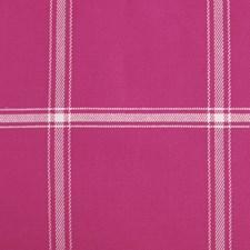 267335 15362 299 Fuchsia by Robert Allen