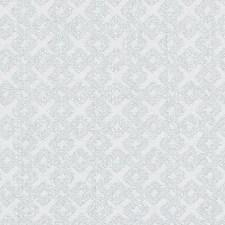 268661 DU16069 15 Grey by Robert Allen