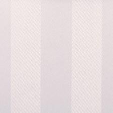 270862 15353 18 White by Robert Allen