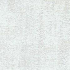 271478 DW16034 88 Champagne by Robert Allen