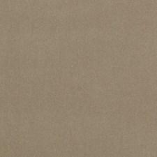 272992 DV15921 587 Latte by Robert Allen