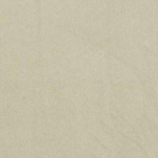 275545 DF16038 598 Camel by Robert Allen