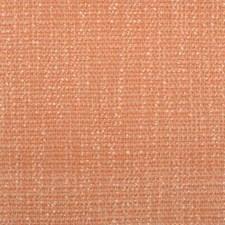 284665 32638 142 Peach by Robert Allen