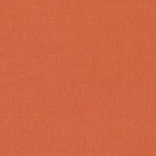 284949 32770 451 Papaya by Robert Allen
