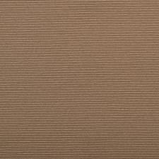 285029 32518 587 Latte by Robert Allen