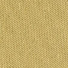 285081 DU15917 264 Goldenrod by Robert Allen