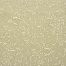 Oyster Solid W Decorator Fabric by Kravet
