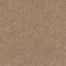 289625 32811 219 Cinnamon by Robert Allen