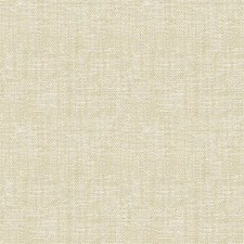 Champagne Texture Decorator Fabric by Kravet