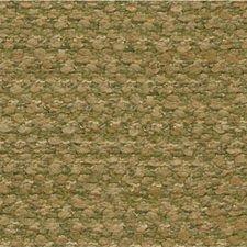 Citron Texture Decorator Fabric by Kravet