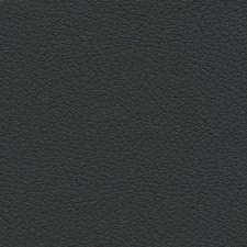 Black Onyx Decorator Fabric by Schumacher
