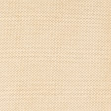Champagne Solid Decorator Fabric by Fabricut
