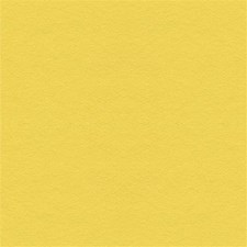 Canary Solids Decorator Fabric by Kravet