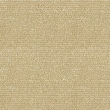 Beach Modern Decorator Fabric by Kravet