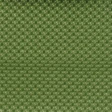 Grass Decorator Fabric by Duralee