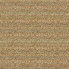 Brown/Beige Ethnic Decorator Fabric by Kravet
