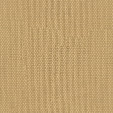 Cider Solids Decorator Fabric by Kravet