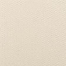 Angora Decorator Fabric by Duralee