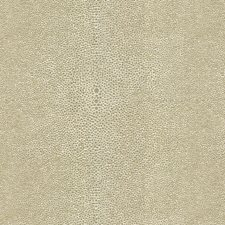 Grey/White Solids Decorator Fabric by Kravet