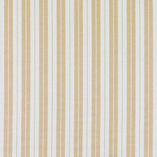 Amber Stripe Decorator Fabric by Duralee
