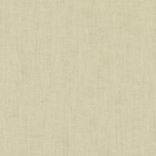Honey Dew Decorator Fabric by Duralee