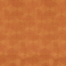 Persimmon Modern Decorator Fabric by Kravet