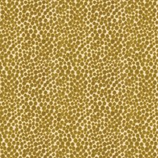 Quince Dots Decorator Fabric by Kravet