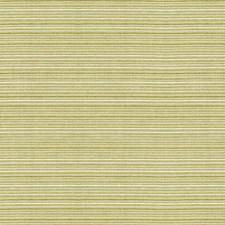 Light Green/White Ottoman Decorator Fabric by Kravet
