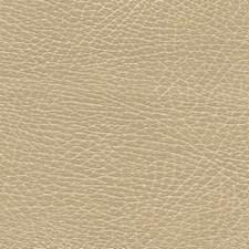Chamois Decorator Fabric by Schumacher
