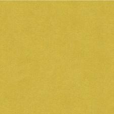 Citron Solids Decorator Fabric by Kravet