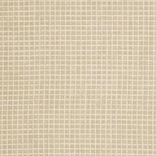Champagne Check Decorator Fabric by Fabricut