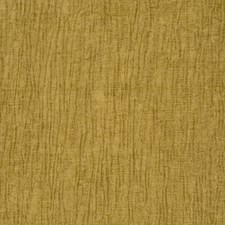 Fern Texture Plain Decorator Fabric by Fabricut