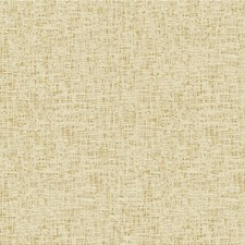 White Gold Solids Decorator Fabric by Kravet
