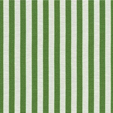 Picnic Green Stripes Decorator Fabric by Kravet