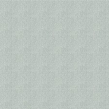 Vapor Tone On Tone Decorator Fabric by Kravet
