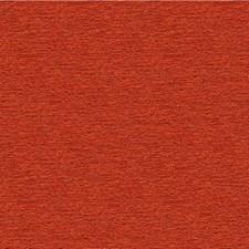 Salsa Solids Decorator Fabric by Kravet