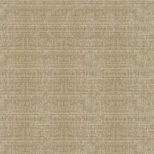 Taupe/Neutral/Beige Solids Decorator Fabric by Kravet