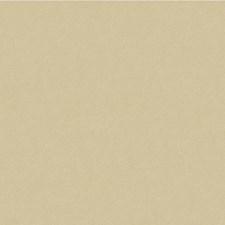 Grey/Beige/Ivory Solids Decorator Fabric by Kravet