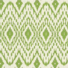 Lime Ethnic Decorator Fabric by Kravet