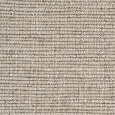 Stone Chenille Decorator Fabric by Kravet